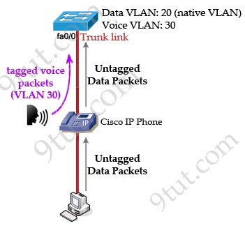 Cisco_IP_Phone_data_voice_VLANs.jpg