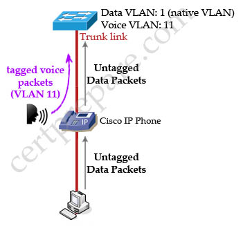 Cisco_IP_Phone_data_voice_VLANs.jpg