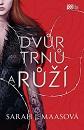 mass_dvur_trnu_a_ruzi