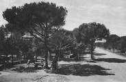 milano-marittima-pensione-al-bosco