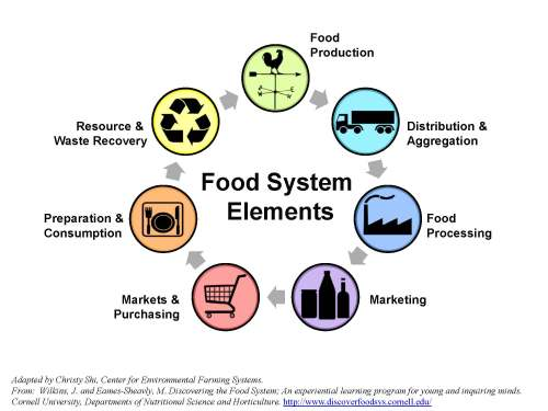 small resolution of food system supply chain diagram