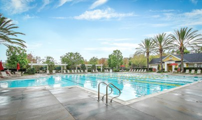 89 Orange Blossom Circle - Cesi Pagano -pool
