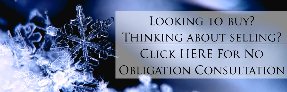 No Obligation Consultation_Snow