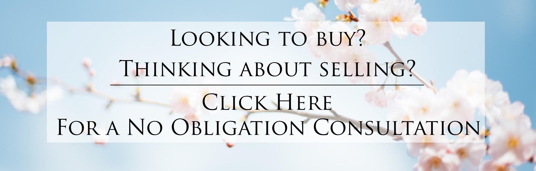 No Obligation Consultation_Spring