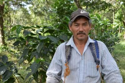 Coop. EL Jabali Comercio Justo El Salvador (195)