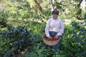 Coop. EL Jabali Comercio Justo El Salvador (45)