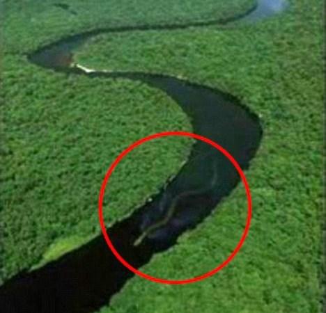 O hoax da cobra gigante de Bornéu