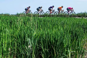 Imagen de la 8ª etapa de la Vuelta Ciclista a España 2021
