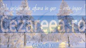 Ganduri XXIII,1
