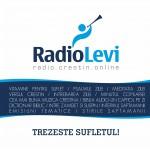 RADIOLEVI-BANNER 336X336