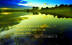 Ioan 11.21, 32 şi Matei 28.20