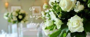 Geneza 2.24, Un singur trup!