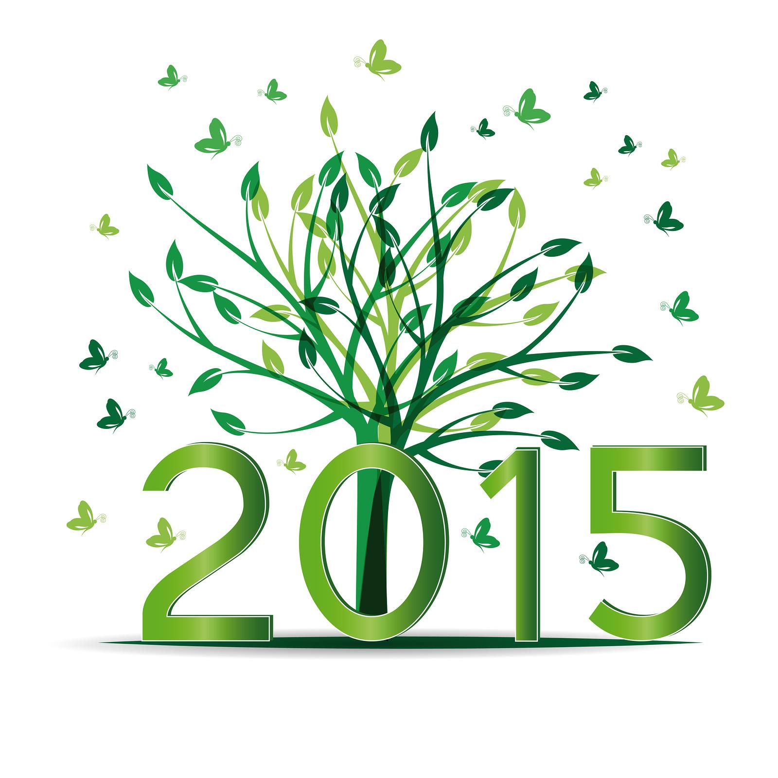 Bonne Année 2015 ! Comité Fédérateur Des Psychanalystes