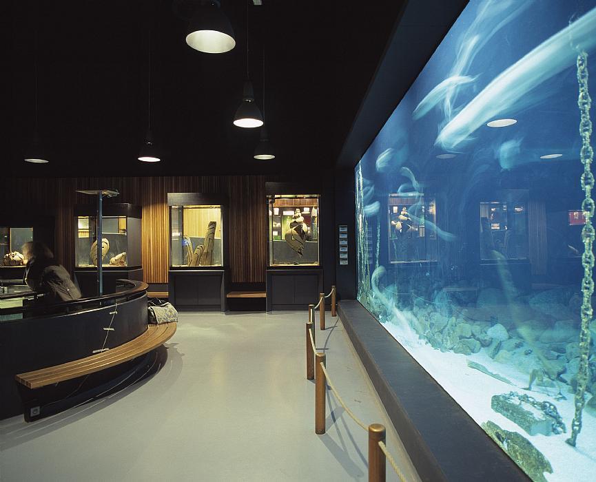 Aquarium hall the Fisheries and Maritime Museum