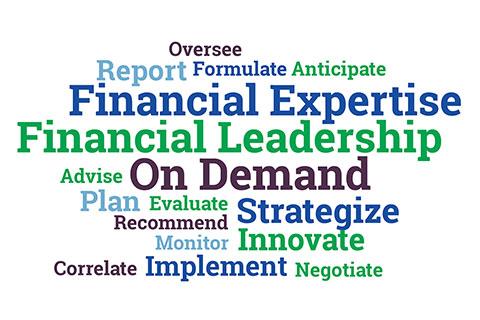 CFO Services Description Roles