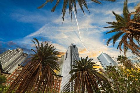 CFO Services for Real Estate