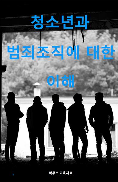 UnderstandingYouthAndGangs-korean