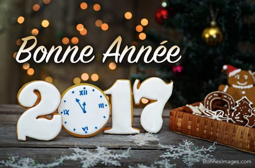 bonne-annee 017
