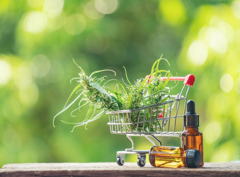 10 Things You Must Consider Before Purchasing a CBD Oil