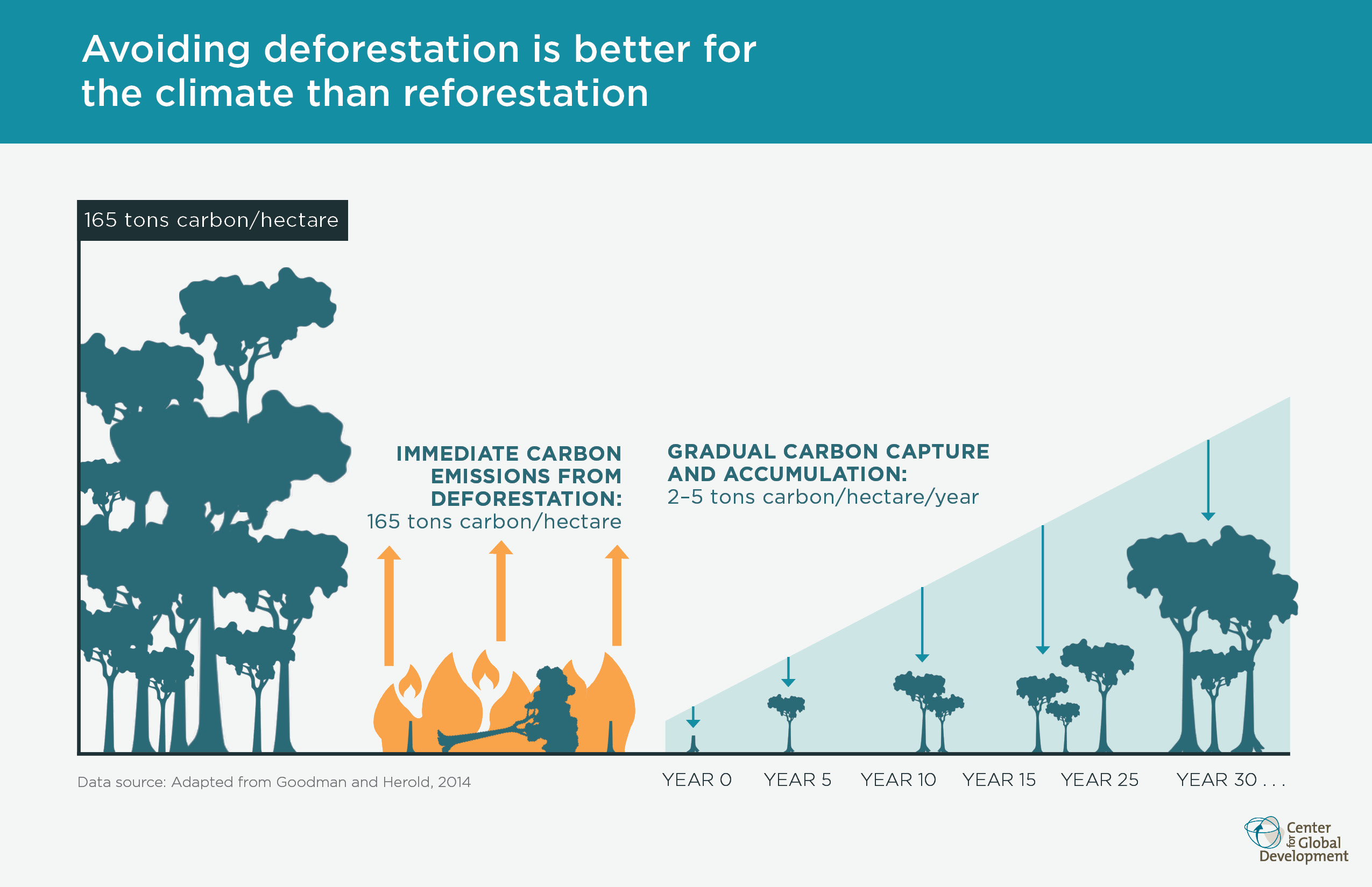 Why Forests Why Now A Preview of the Science Economics