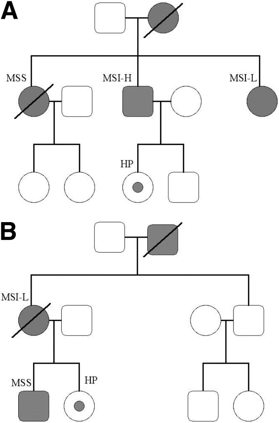 Evidence for BRAF mutation and variable levels of