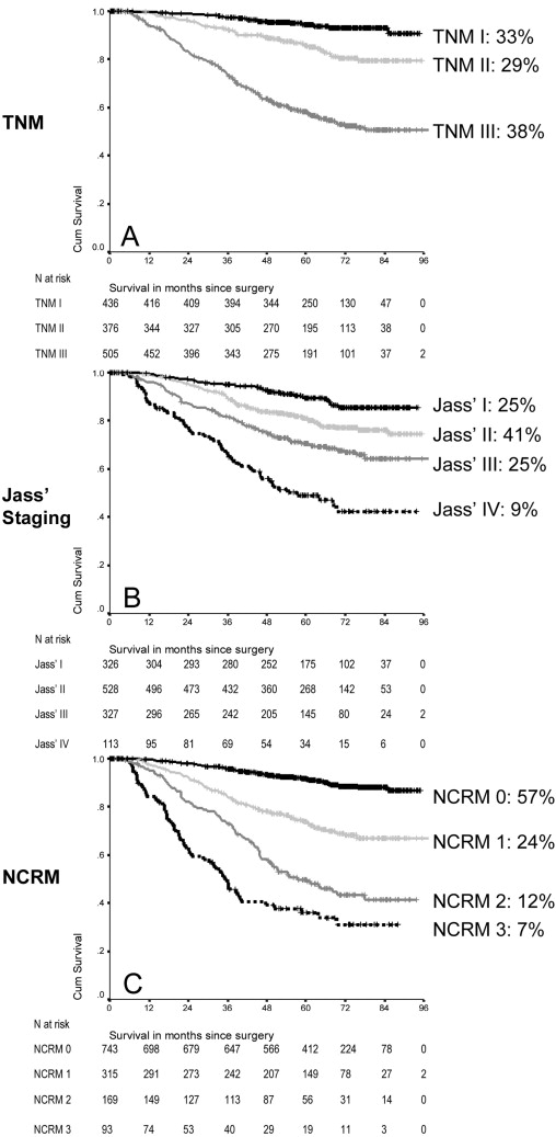 Improvement of Staging by Combining Tumor and Treatment