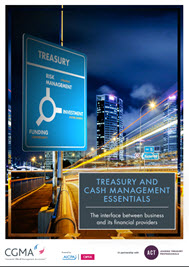 Treasury and Cash Management Tool