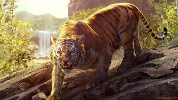 The Jungle Book (Movie) Review 4