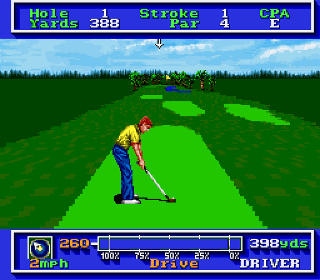 Developer: Sterling Silver Software Publisher: Electronic Arts Genre: Sports/Golf Released: 1991 Rating: 3.0