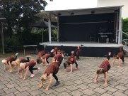 Die Hoppelhasen von der Kindergartentanzgruppe