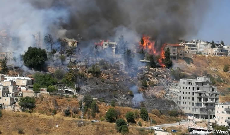 Raging Fires In Safed Israel Leave Families Homeless