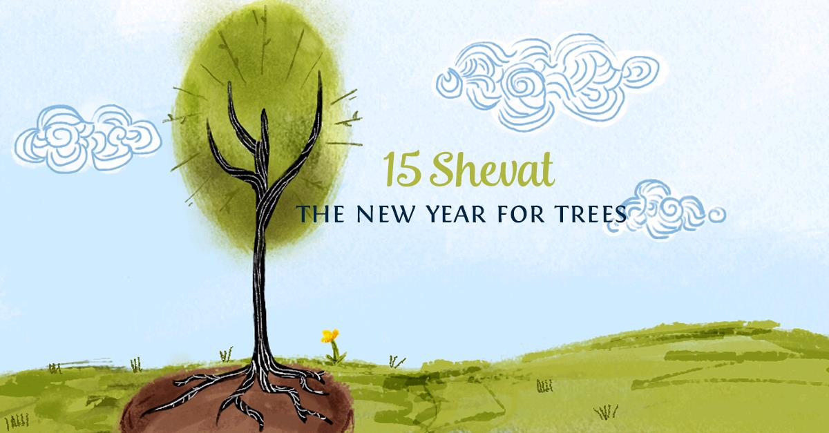 15 Shevat  The New Year for Trees known as Tu Bishvat