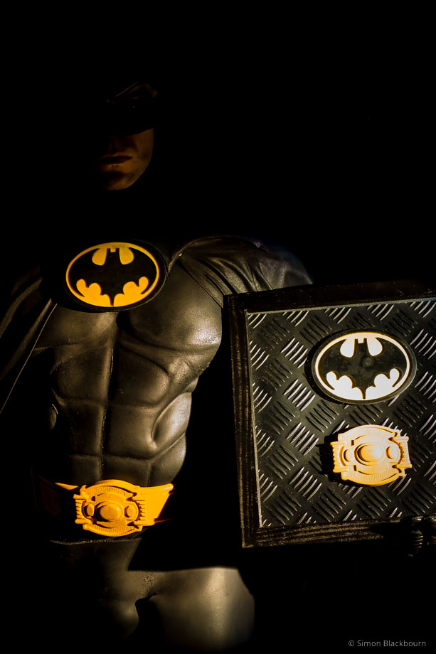 One lucky person won this prize (the one on the right, not Batman) (© Simon Blackbourn)