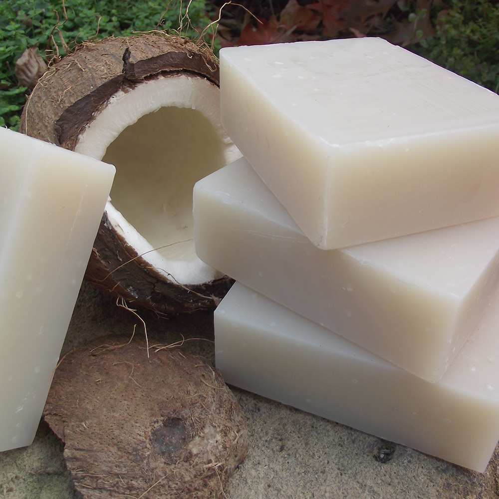 natural shampoo bar coconut milk
