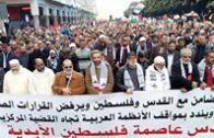 مباشر: فعاليات المسيرة نصرة للقدس الشريف وفلسطين