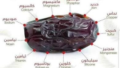 Photo of 8 avantages de rompre le jeûne avec les dates