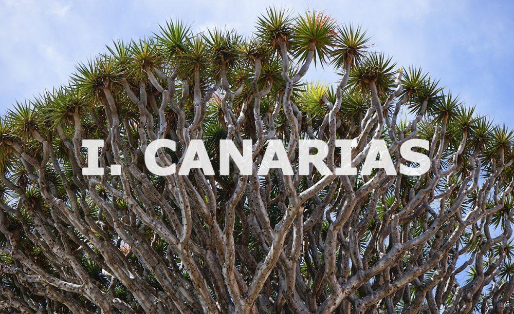canarias-chaine-rotisseurs-espana