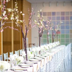 Chair Covers Rental Cleveland Ohio Conference Table And Chairs Revit Chiavari For Or Wholesale Purchase Cover Express