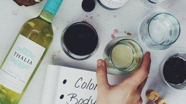 l'apparence du vin