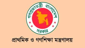 Job at Ministry of primary and mass edution