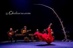 olga-pericet-bienal-2018-chalaura-la-gafa-06