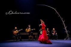 olga-pericet-bienal-2018-chalaura-la-gafa-07