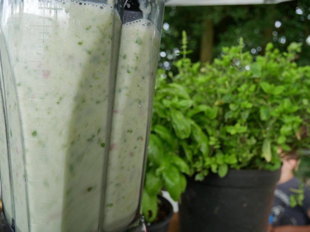 This drink is both a hangover smoothie and a delicious breakfast smoothie. Packed with spinach, banana and grapes, while being balanced with lime, ginger and coconut milk.