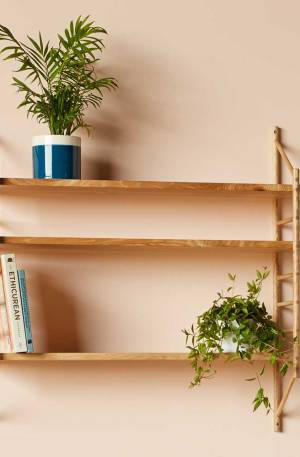 Wood wall shelving MIMA by John Eadon