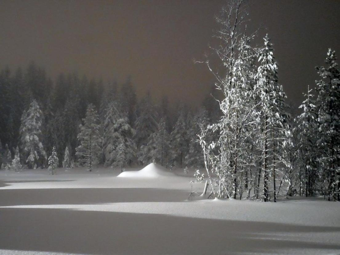 Looking out over the snow filled fields during a night time cross skiing session. Sälen, Sweden. Dalarna county.