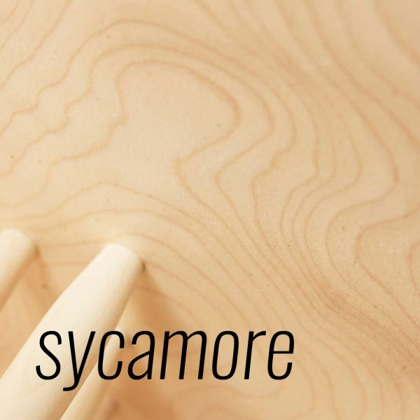 Sycamore detail - John Eadon