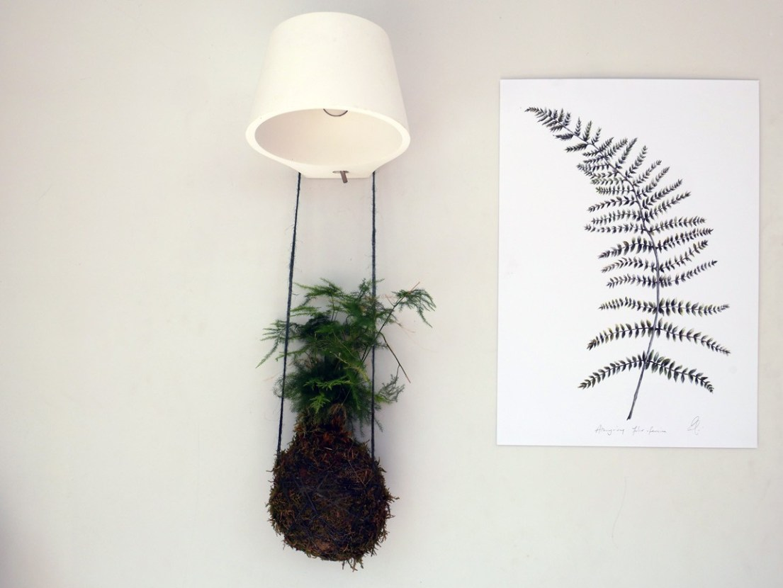 Kokedama balls are great decorative pieces. Why not hang them next to botanical artwork, like this Fern print by Dollybirds Art? Available on Chalk & Moss (chalkandmoss.com).