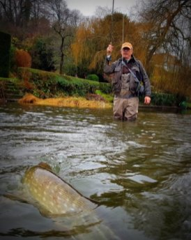 Pike Fishing - River Stour