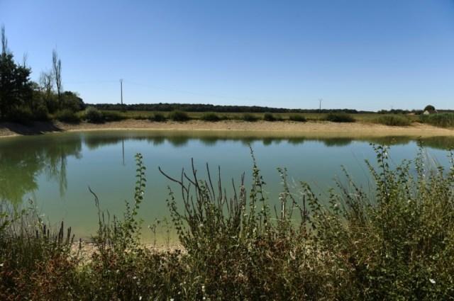 Un plan d'eau servant de réserve d'irrigation à Chevannes le 7 août 2020 (AFP - ERIC PIERMONT)