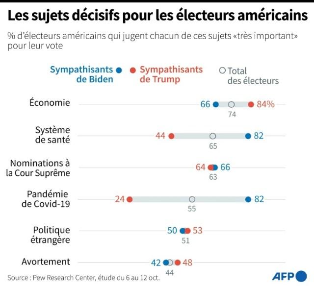 Les sujets décisifs pour les électeurs américains  (AFP - Jonathan WALTER)